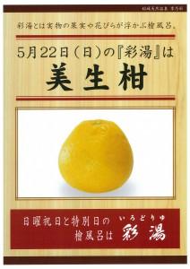 20160522(美生柑)