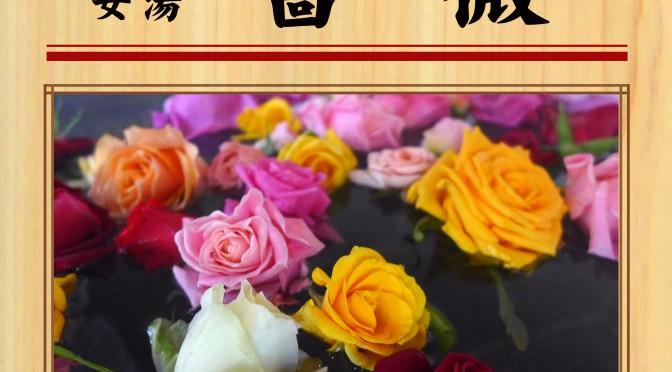 6月25日(土) バラ(女湯)