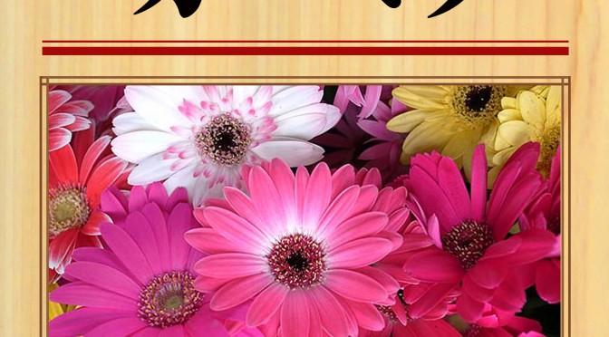 8月6日(土) ガーベラ(女湯)