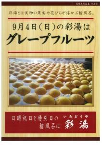 20160904 グレープフルーツ