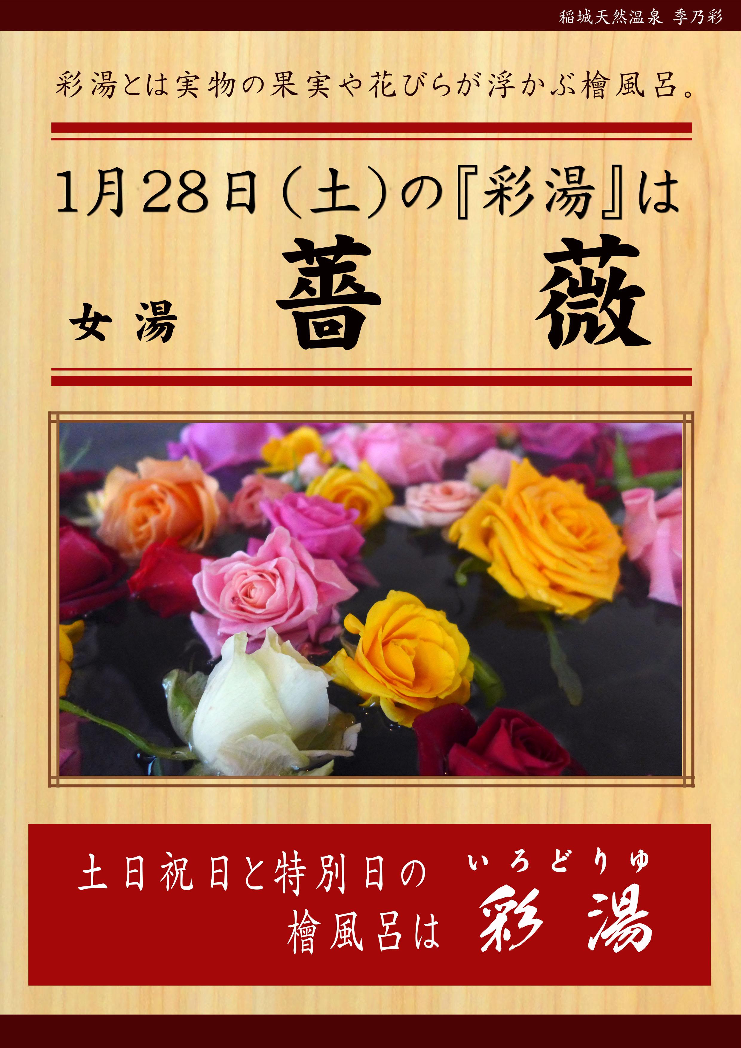 20170128POP イベント 彩湯 女湯 薔薇