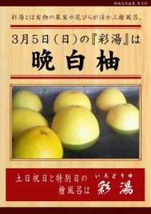 20170305POP イベント 彩湯 晩白柚