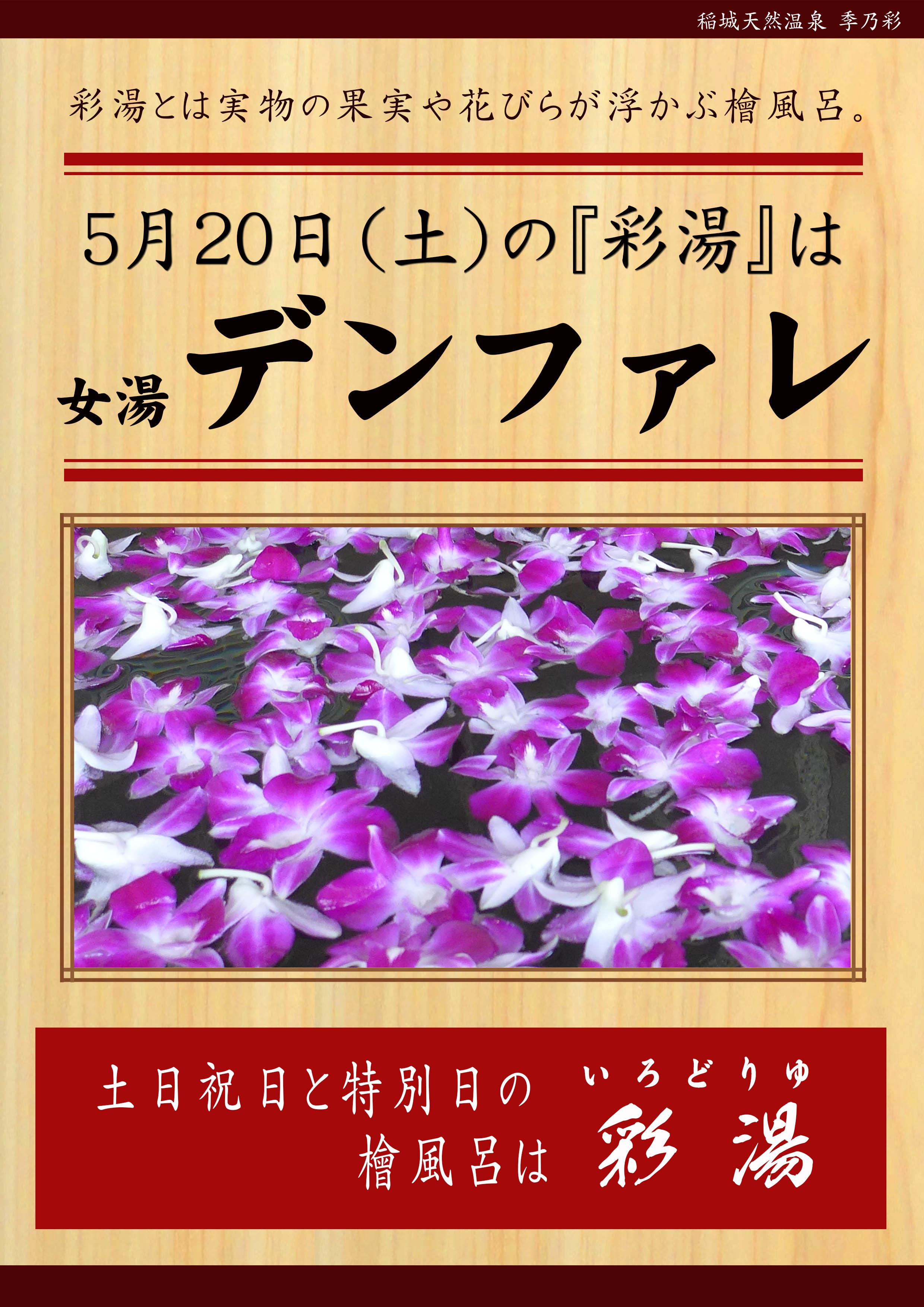 20170520POP イベント 彩湯 女湯 デンファレ