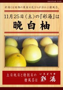 20171125POP イベント 彩湯 晩白柚