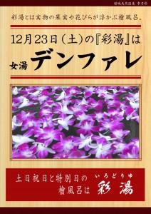 20171223POP イベント 彩湯 女湯 デンファレ