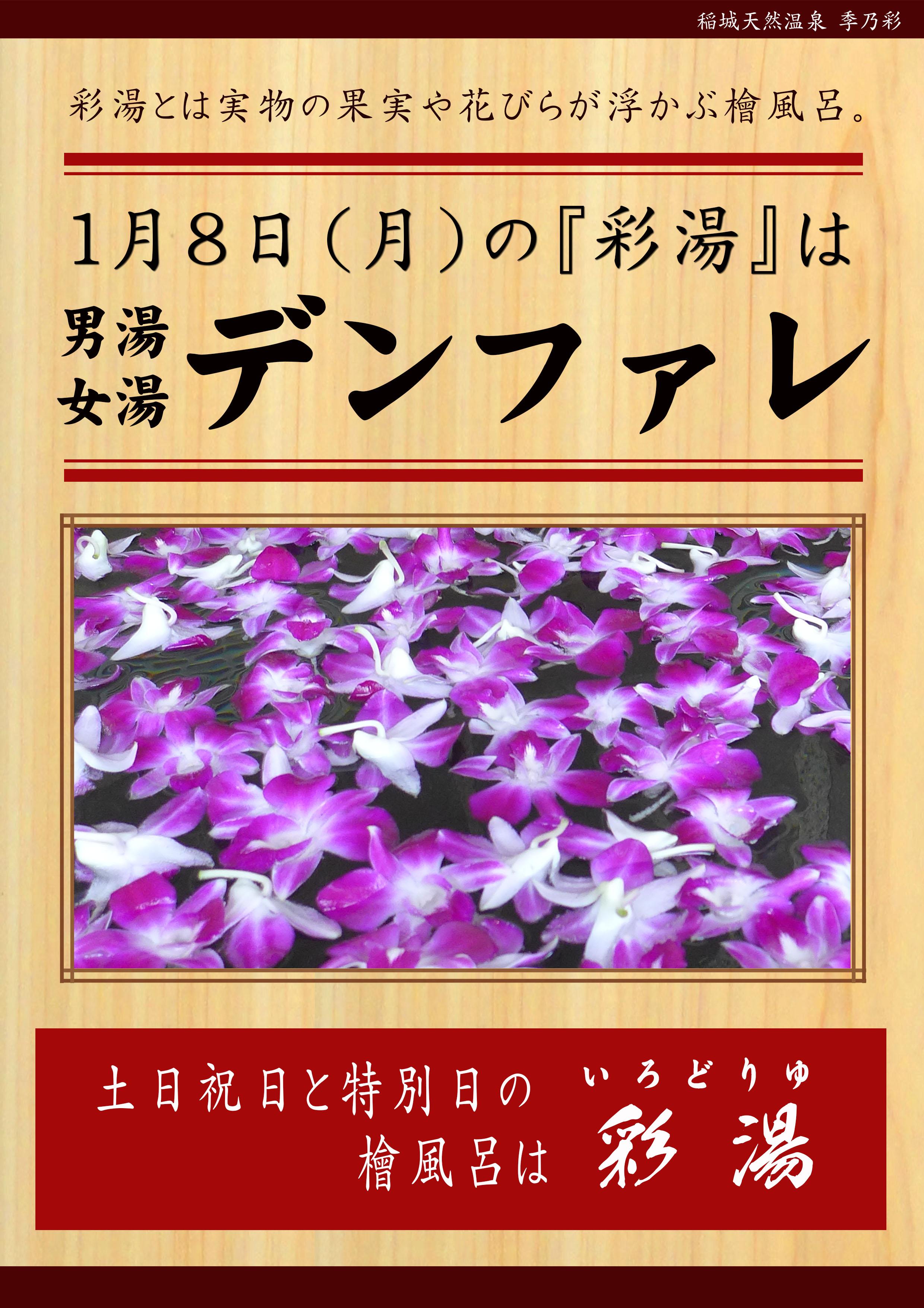 20180108POP イベント 彩湯 デンファレ