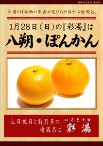 20180128POP イベント 彩湯 八朔 ぽんかん