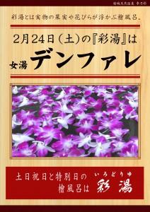 20180224POP イベント 彩湯 女湯 デンファレ