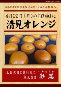 20180422POP イベント 彩湯 清見オレンジ