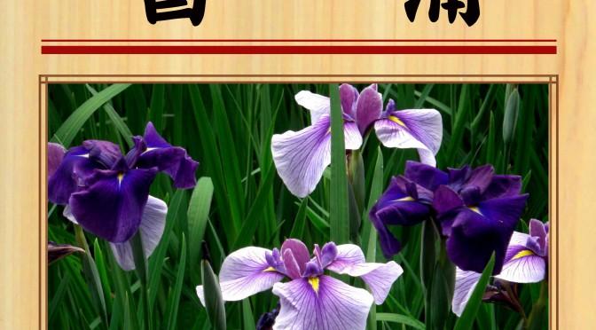 5月5日(土) 菖蒲湯