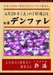 20180428POP イベント 彩湯 女湯 デンファレ