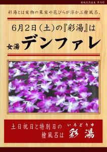 20180602POP イベント 彩湯 女湯 デンファレ