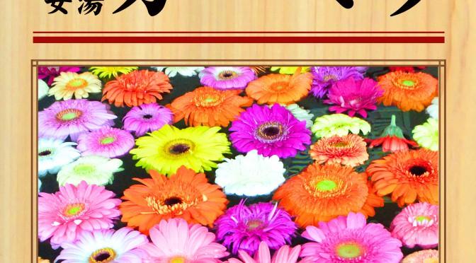 7月14日(土) 女湯 ガーベラ