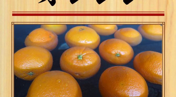 8月19日(日) オレンジ
