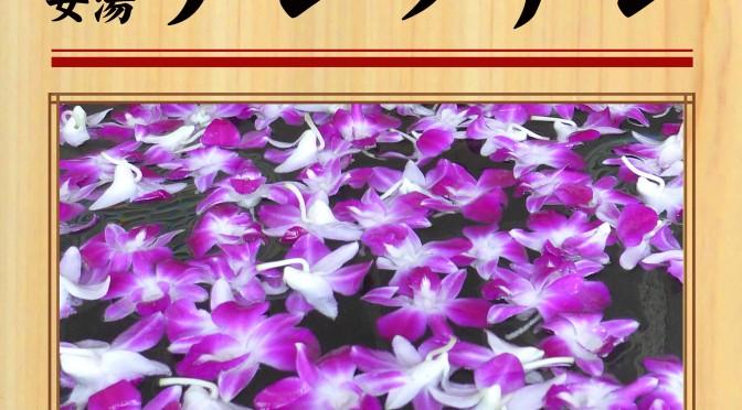 9月1日(土) 女湯 デンファレ