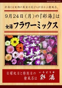 20180924POP イベント 彩湯 フラワーミックス3種