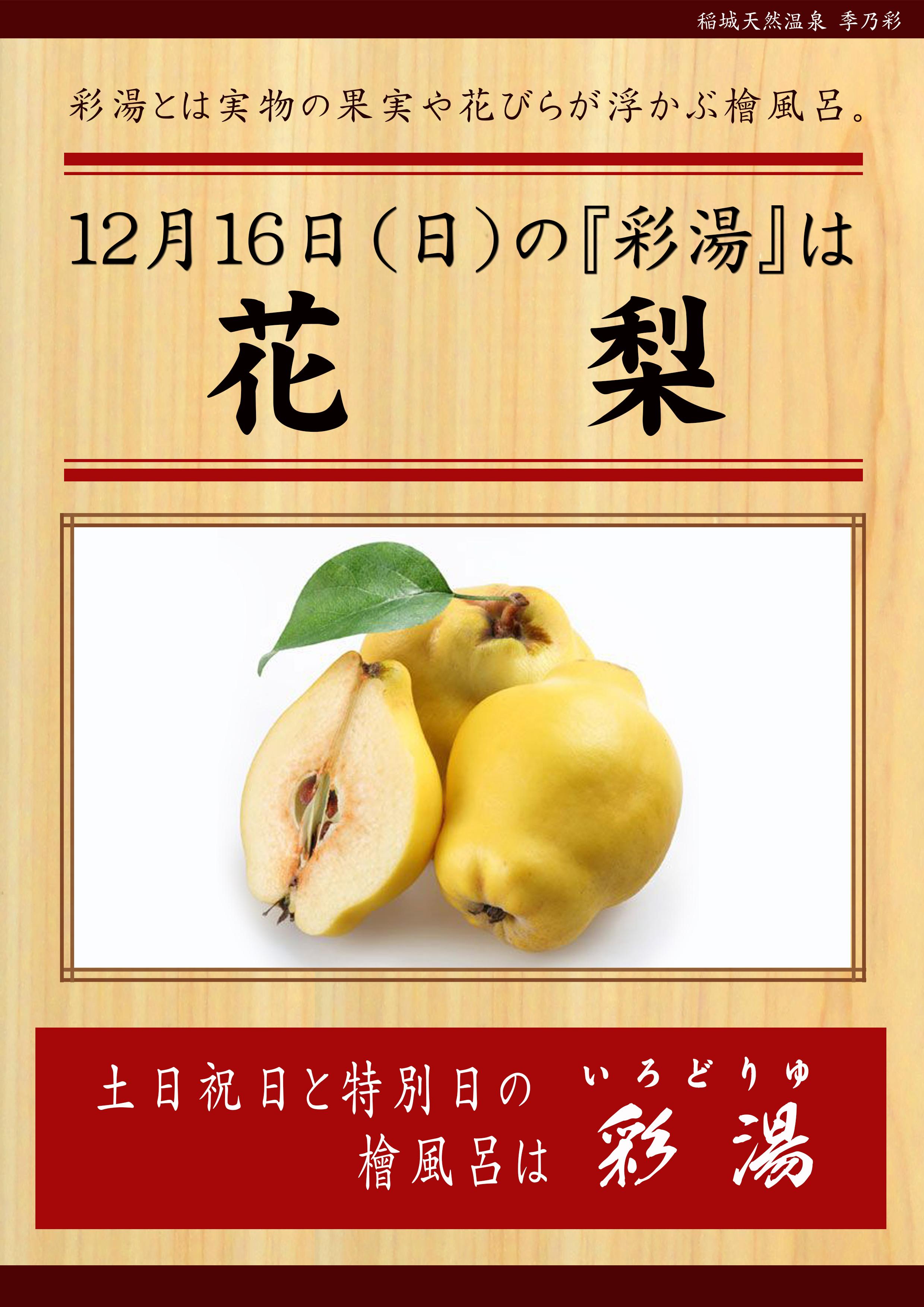 20181216POP イベント 彩湯 カリン