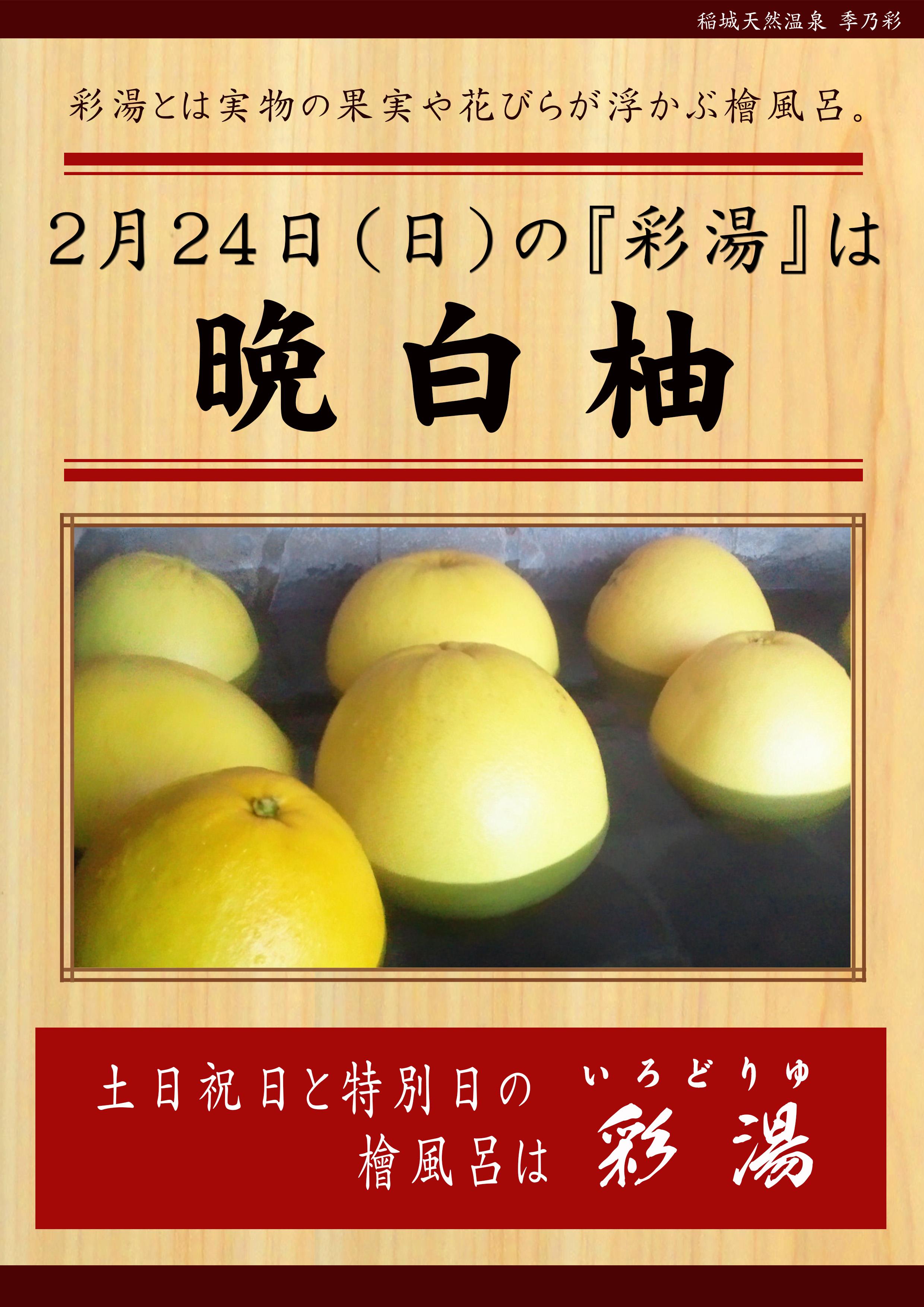 20190224 POP イベント 彩湯 晩白柚