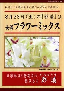 20190323POP イベント 彩湯 女湯 フラワーミックス