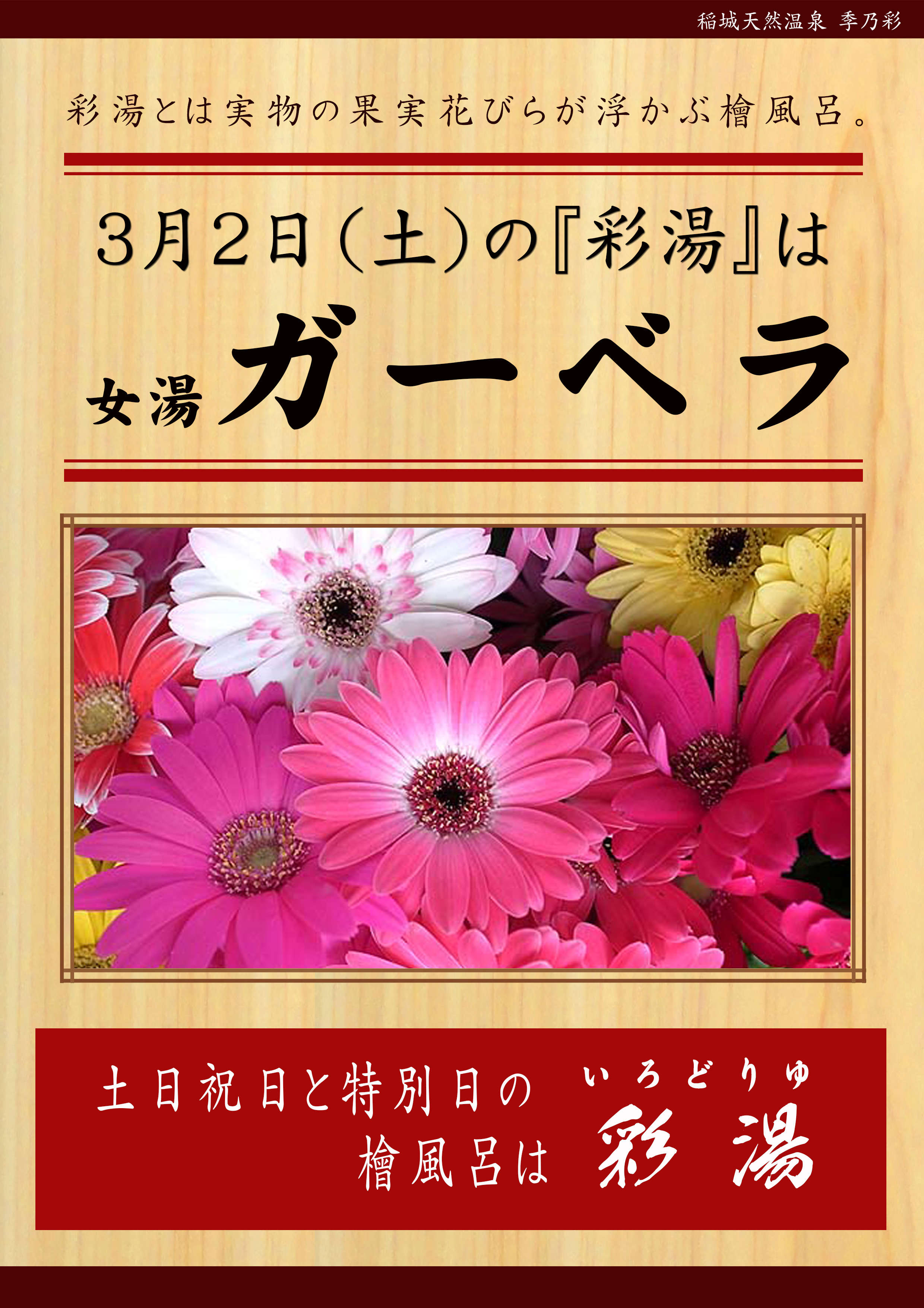 20190302POP イベント 彩湯 女湯 ガーベラ