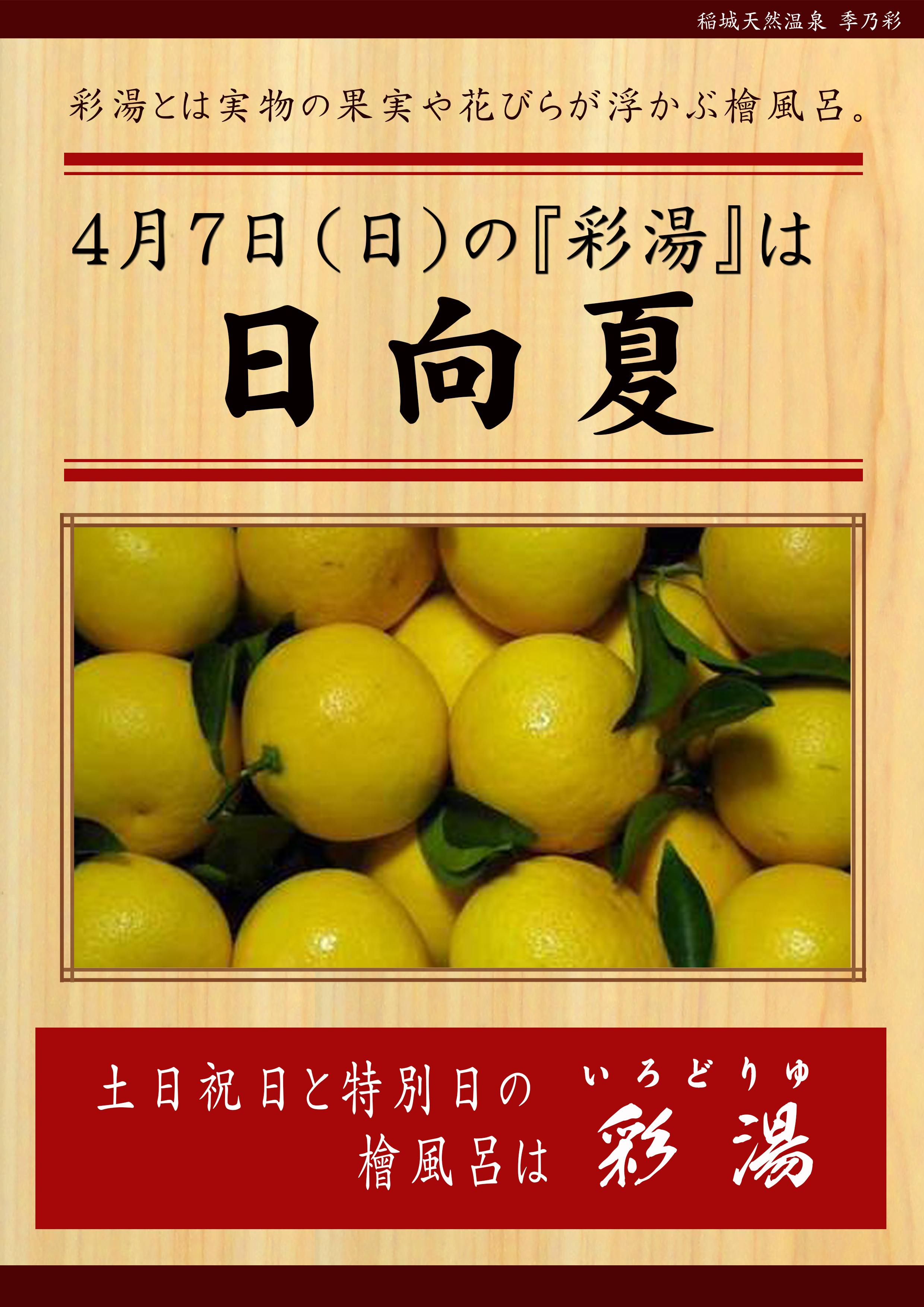 20190407POP イベント 彩湯 日向夏