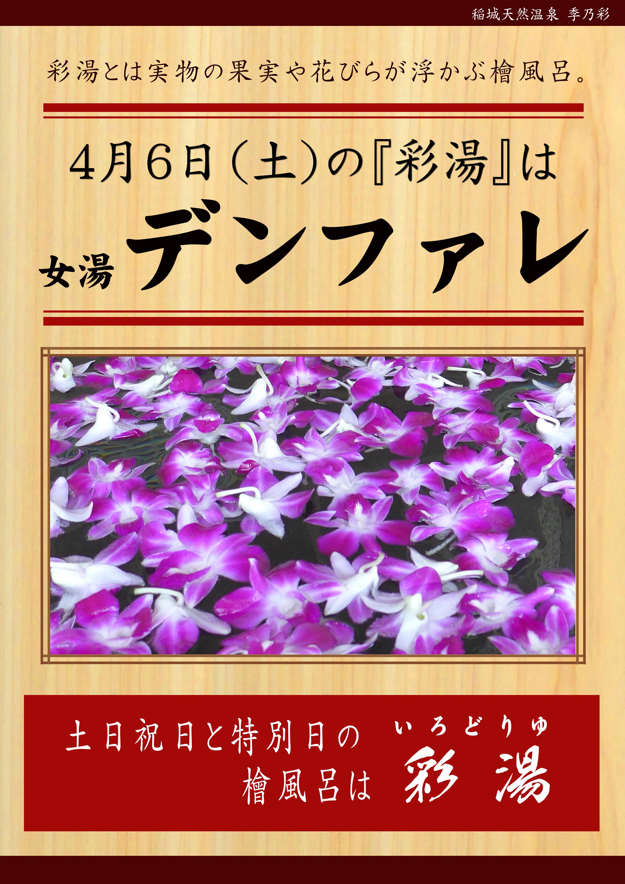 20190406POP イベント 彩湯 女湯 デンファレ