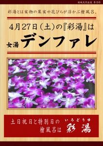 20190427POP イベント 彩湯 女湯 デンファレ