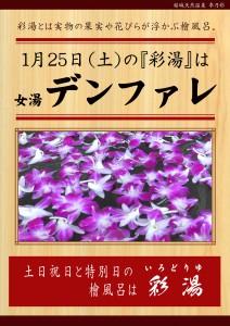 20200125 POP イベント 彩湯 女湯 デンファレ