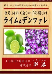 200814 POP イベント 彩湯 ライム・デンファレ