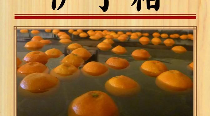 0328彩湯 伊予柑
