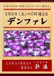 0306彩湯 男女湯 デンファレ